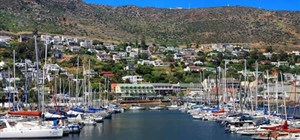 Bed & Breakfast - Simon's Town Visitor Attractions